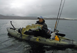 Crazy-Daisy-Cod-Norway-Kayak