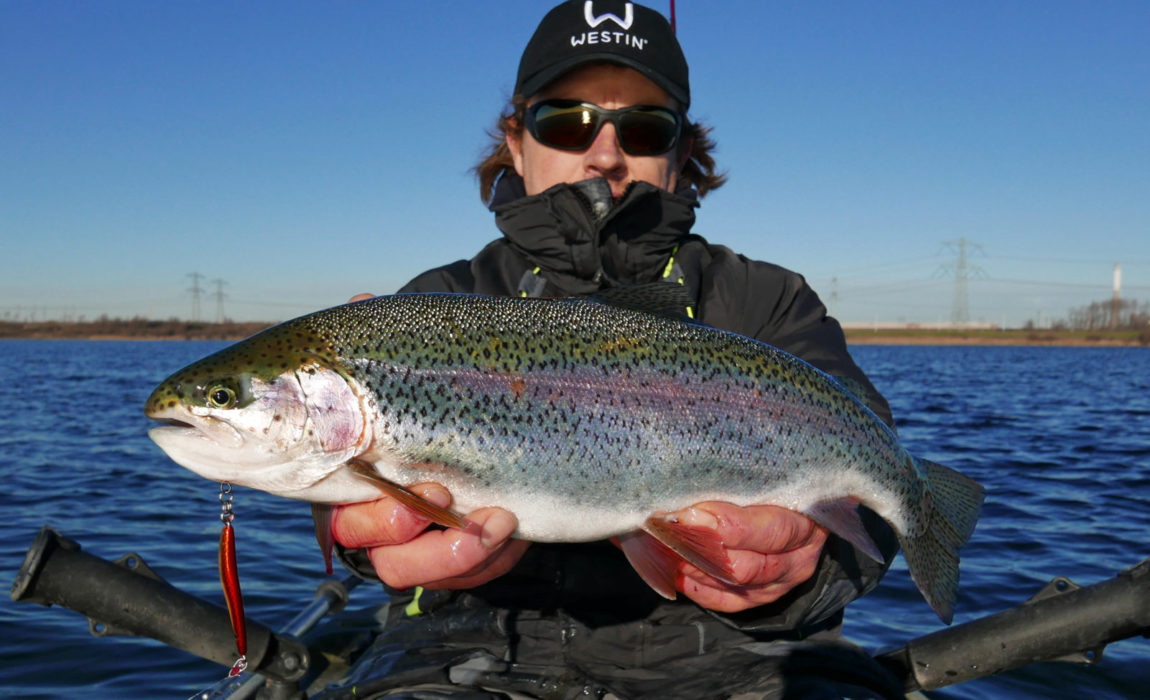 Salty-Westin-Rainbow-Trout